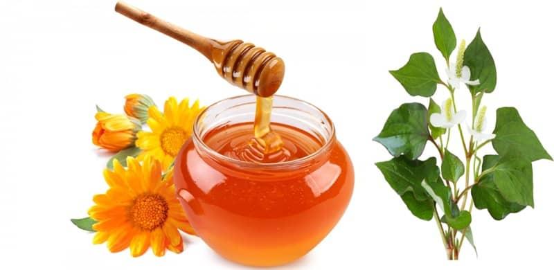 trị mụn với mật ong và diếp cá
